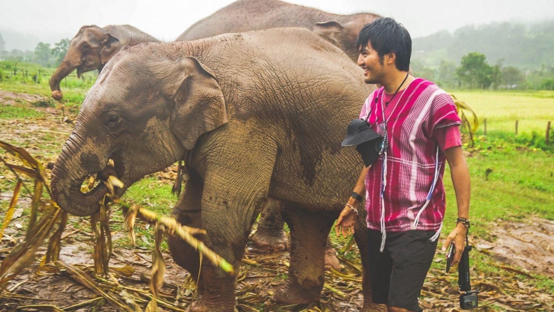 Elephant Sanct